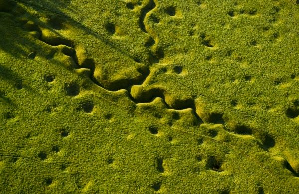 The landscape of the Newfoundland Memorial Park, Beaumont Hamel - containing trenches, shell crater and wire pickets. The trenches and shell-holes are clearly visible from the air